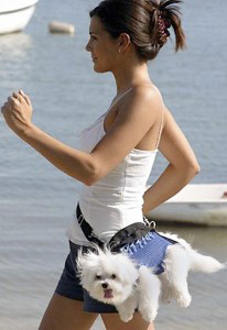 lady walking with dog - exercise